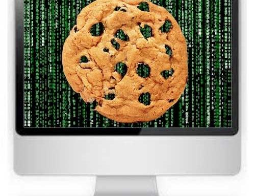 ¿Qué son las cookies y cómo nos afectan?